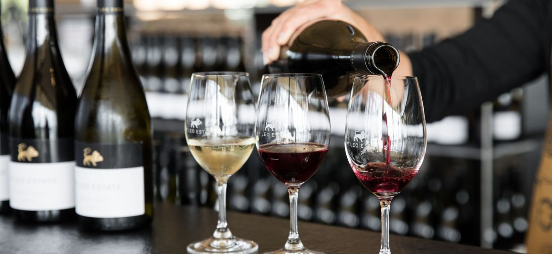 Rhiannon Taylo_Wine Tasting